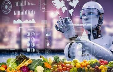 intello-labs-raises-5-9m-to-digitize-quality-in-fresh-produce-english.jpeg
