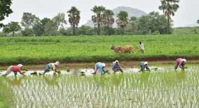 investment-support-of-inr-7-509-crore-under-rythu-bandhu-scheme-for-telangana-farmers-english.jpeg