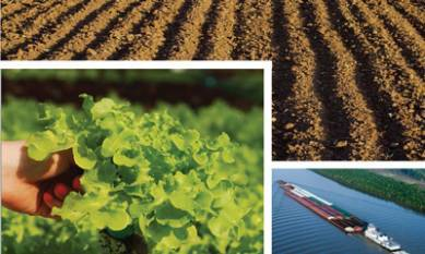kentucky-agricultural-finance-corporation-sanctions-credit-scheme-for-agri-projects-english.jpeg