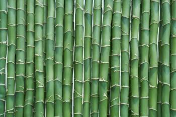 kvic-welcomes-increase-in-import-duty-on-bamboo-sticks-english.jpeg