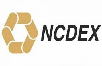 launch-of-options-in-goods-a-timely-step-says-ncdex-ceo-english.jpeg