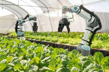 lsquo-need-to-increase-private-investment-in-the-agriculture-sector-rsquo-says-tomar-english.jpeg