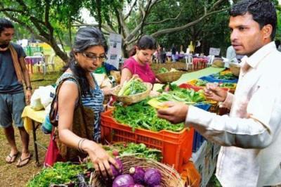 maharashtra-cm-opens-mumbai-rsquo-s-first-farmer-to-consumer-market-english.jpeg
