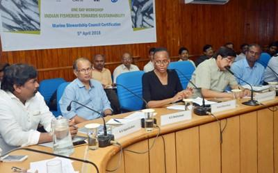 msc-certification-a-boon-for-boosting-export-value-of-indian-fisheries-english.jpeg
