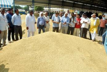 ncdc-sanctions-inr-19444-cr-for-msp-operations-support-to-states-during-kharif-season-2020-21-english.jpeg
