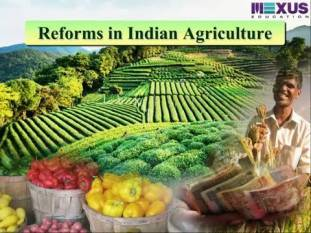 president-sign-farmers-rsquo-produce-price-assurance-ordinances-boosting-agriculture-english.jpeg