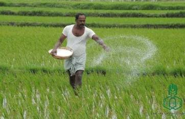 rcf-made-available-more-than-200-000-metric-tonnes-of-imported-fertilizers-for-the-kharif-season-english.jpeg