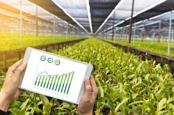 sbi-scouts-agritech-partnerships-to-push-farm-credit-english.jpeg