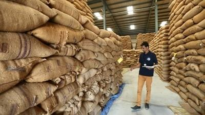 sohan-lal-commodity-completes-eight-years-in-operations-english.jpeg