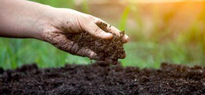 soil-health-card-scheme-helped-to-achieve-surplus-capacity-in-foodgrain-production-english.jpeg