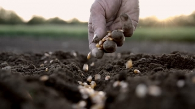 sowing-of-the-summer-crops-satisfactory-despite-caronavirus-outbreak-says-agri-ministry-english.jpeg