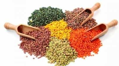 states-to-decide-procurement-of-pulses-oilseeds-dates-under-pss-says-tomar-english.jpeg