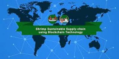 thai-union-uses-blockchain-technology-in-shrimp-industry-english.jpeg